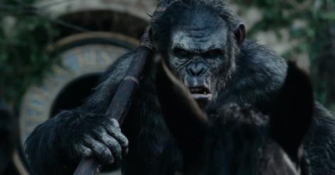 apes-koba-horse