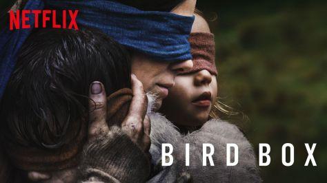 bird-box-wide